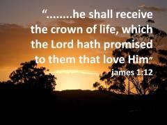 ayat_131010_crownoflife