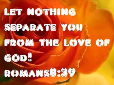 ayat_131121_romans_8-39