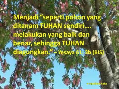 ayat_140121_yes61_3