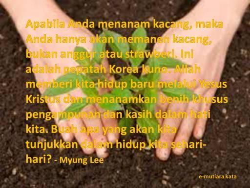 ayat_140303_planting